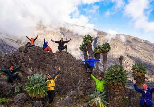Килиманджаро - где больше впечатлений?